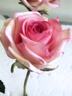 Gumpaste rose by Sugar Art Studio