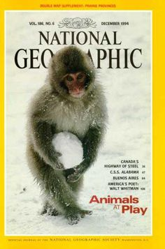 National Geographic  December 1994 / National Geographic Photography / Covers