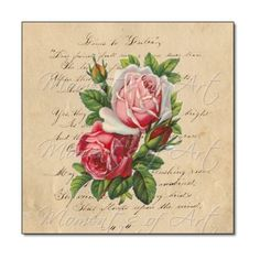 Traditional Roses Square Floral Print Pink and Red by MomentsOfArt, $19.00