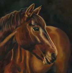 Brown horse Nathalie Martet