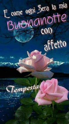 Buona notte Good Night, Good Morning, Goeie Nag, Holidays And Events, Dolce, Facebook, Wallpaper, Google, Good Night All