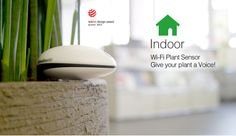 Koubachi - WiFi plant sensor. Give your plant a voice!