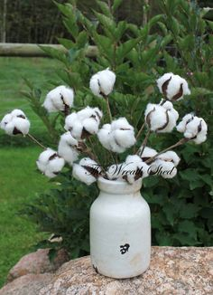 SHIPS FREE, 3 - 12 Cotton Boll Stems, Natural Cotton Bolls, Wedding Decor, 2nd Anniversary Gift, Cotton Branches, Cotton, Cotton Home Decor This 3-pack of natural cotton bolls when added to a wreath, centerpiece, or in your home décor will give a real southern farmhouse flair! Use them alone in a vase, or arrange them with beautiful wildflowers or natural wheat. Also becoming very popular for weddings and a great gift for 2nd wedding anniversaries. This purchase includes three cotton boll…