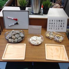 Exploring letters and words provocation. www.wondersinkindergarten.blogspot.ca