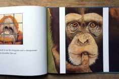chimpanzee illustrated by anthony browne