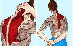 Yoga Fitness, Health Fitness, Severe Back Pain, E Sport, Tai Chi, Ayurveda, Human Body, Pilates, Health And Beauty