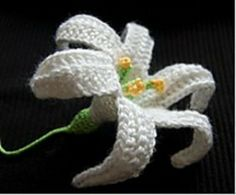 easter-lily_small2 (1)