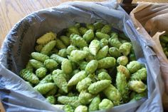 Hops for the beer!