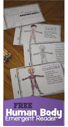 Grab this FREE Human Body Emergent Reader at 123 Homeschool 4 Me. These no prep, black and white emergent readers are such a fun to teach kids about the human body. Human Body Lesson, Human Body Science, Human Body Activities, Human Body Unit, Human Body Systems, First Grade Science, Kindergarten Science, Teaching Science, Science For Kids