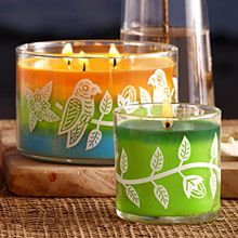 Product Image of View All Candles