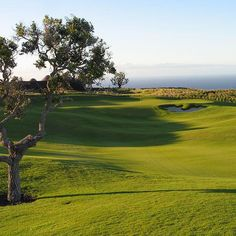 #BigIslandAttraction - Nanea Golf Club, is an 18-hole private golf course that opened in 2003 and designed by David McLay Kidd. The green fee during weekdays/weekends is $200. For more information call tel.# (808) 930-1300. #LuxuryBigIsland