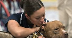 Bestiality Wins In Canada, see more at: http://absoluterights.com/bestiality-wins-canada/