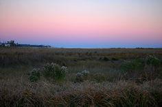salt marsh at sunset | Salt Marsh at Sunset