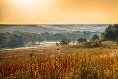 Autumn Morning - Tallgrass Prairie Reserve near Cottonwood Falls, Kansas by Patrick Emerson Kansas Usa, State Of Kansas, Kansas City, Oklahoma, Places To Travel, Places To See, Pixie, Flint Hills, Places In America