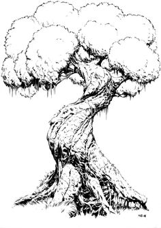 Best old tree drawing awesome ideas Tree Drawings Pencil, Art Drawings, Tree Branch Tattoo, Tree Sketches, Tree Artwork, Old Trees, Landscape Drawings, Environment Concept Art, Realistic Drawings