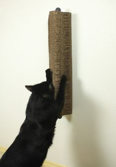 Wall-mounted Scratch Tower - Some cats want to stretch way up high when they scratch and traditional floor-standing scratchers just don't cut it. We've got a solution! Now the Scratch Tower modern cardboard cat scratcher is available as a wall-mounted design. You can choose the perfect height for your kitty to stretch and scratch, plus the wall-mounted scratcher doesn't take up any valuable floor space. It's great for small spaces, like hallways.