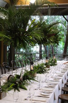 wedding at the melbourne zoo rainforrest room. absolutely amazing!