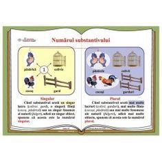 Plansa Numarul substantivului Romanian Language, Classroom, Math, Learning, School, Languages, Album, Craft, Google