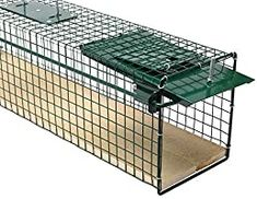 Moorland Safe 6042 Lebendfalle 80x15x19 cm mit Holzboden als stabile Tierfalle für Ratten, Marder, Iltis, Katzen: Amazon.de: Küche & Haushalt Self Defense Martial Arts, Wood Floor, Household, Animales