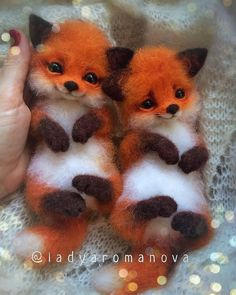 """cute fox Comment """"fox"""" in your language Hand crafted baby foxes Follo Baby Animals Pictures, Cute Animal Photos, Cute Animal Drawings, Funny Animal Pictures, Baby Animals Super Cute, Cute Little Animals, Cute Funny Animals, Cute Cats, Fluffy Animals"""