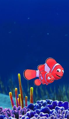 Nemo HD Wallpapers For Android Tablet  #Nemo  #HDWallpapers  #AndroidTablet