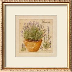 Herbes de Provence, Lavande Framed Art Print  #DWRdining #goodhousekeeping #createyourcomfy