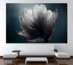 Floral Canvas Wall Art Flower Wall Decor Botanical Modern Art Abstract Flower Home Decor Colorful Wall Art Nature Print Flower Poster by ArtWog Colorful Wall Art, Floral Wall Art, Flower Wall Decor, Nature Prints, Art Nature, Abstract Flower Art, Canvas Wall Art, Canvas Prints, Thing 1