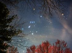 As spring comes to planet Earth's northern hemisphere, familiar winter constellation Orion sets in early evening skies and budding trees frame the Hunter's stars.  the highest resolution version available.
