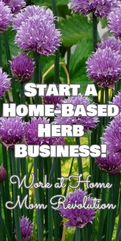 Start a Home-Based Herb Business! / Work at Home Mom Revolution