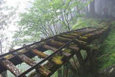 Long forgotten railroad bridge and tracks in Japan.