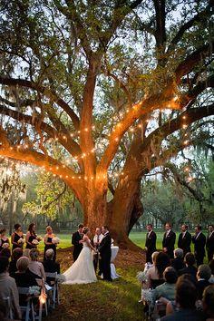 ceremony lighting for a just before dark wedding #weddinglighting http://www.weddingchicks.com/2014/04/14/get-polished-events-southern-plantation-wedding/