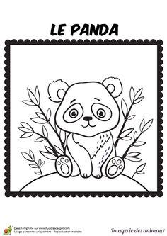 293 meilleures images du tableau coloriages et techniques de dessin draw pokemon drawing - Coloriage panda maternelle ...
