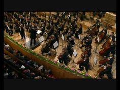 Tchaikovsky Violin Concerto 1st mvt. Part1 - Antal Zalai violin.* One of my favorites from Tchaikovsky.