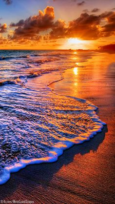 Sunset, beach, ocean