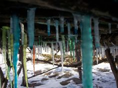 """Down Under,"" reveals the icicles forming as the ice bench melts. By Frank Leahy"