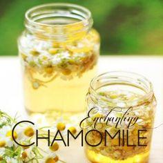 Χρήσεις χαμομηλόλαδου   Είναι πάρα πολλές. Χρησιμοποιείται ακόμα και σαν ντεμακιγιάζ προσώπου, ή για μασάζ προσώπου, για λάδι σώματος μαζί μ... Homemade Beauty, Diy Beauty, Beauty Hacks, Beauty Elixir, Beauty Cream, Lotion Bars, Healing Herbs, Healthy Tips, Beauty Secrets