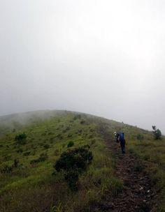 Menaklukkan Gunung Guntur di Garut... | wisbenbae