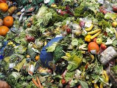 Every year, each person throws away 13 kg of food from unbeaten leftovers, still-packaged food products and expired produce and packaged goods. 21% of food purchased in France ends up being wasted.