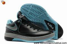 Cheap Discount Black Grey Blue Nike Air LeBron E.E. 2013 Basketball Shoes Store