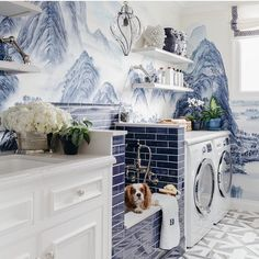 Dina Bandman's dog wash laundry design for the 2017 SF Designer Showcase House | Dina Bandman Interiors