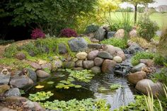 small water gardens, outdoor living, patio, ponds water features, An unused corner of the backyard becomes an oasis and is no longer wasted space