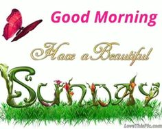 Super sunday wishes| sunday quotes wishes| sunday good morning wishes| sunday quotes, photo, gif, photography, message, sms, festival wishes image| #sunday #sunday_wishes Sunday Wishes Images, Happy Sunday Hd Images, Sunday Gif, Good Morning Sunday Images, Sunday Morning Quotes, Good Morning Happy Sunday, Sunday Quotes Funny, Good Morning Gif, Good Morning Picture