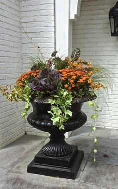 For container gardening ideas, search the internet, the library or a bookstore. The challenge is to come up with a pleasing container garden design. Fall Flower Pots, Fall Flowers, Cut Flowers, Purple Flowers, White Flowers, Beautiful Flowers, Fall Planters, Outdoor Planters, Indoor Outdoor