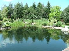 Duży staw kąpielowy Four Square, River, Outdoor, Outdoors, Outdoor Games, The Great Outdoors, Rivers