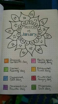 January's monthly mood tracker for 2018