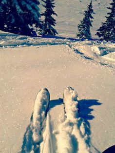 #ski #skiing #salomon #snow #freedom #sciare #poudreuse  By Kiara VI