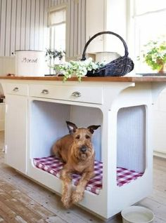 Is your dog always underfoot in the kitchen? Create a space where they are close by, but safely out of the action by adding a dog bed to an island or bank of cabinets. (It could be as simple as removing a couple cabinet doors and removing a shelf!)