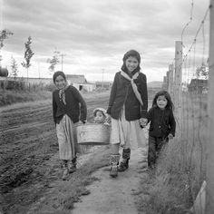 Such a sweetly charming image of three Inuit girls carrying a youngster in a bucket. 1950s