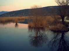 https://flic.kr/p/9ga9eK | Ioannina, Greece - February 2011 | Pamvotida lake.