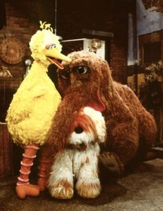 Favorite Sesame Street characters!  Big Bird, Snuffleupagus, and most importantly, Barkley!